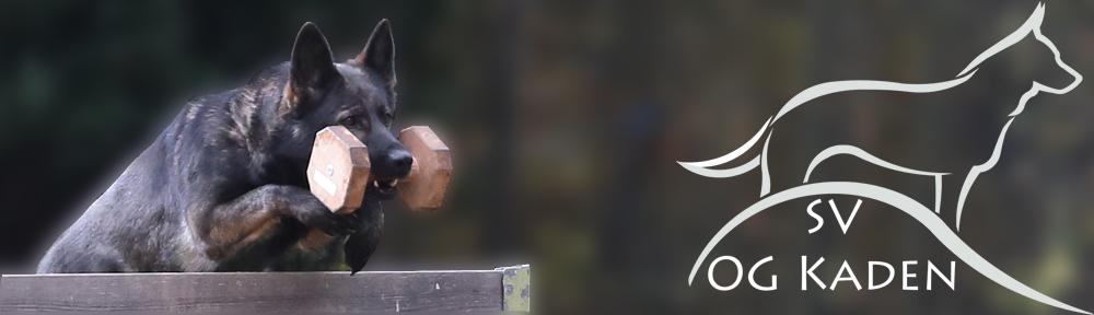 Verein für Deutsche Schäferhunde OG Kaden